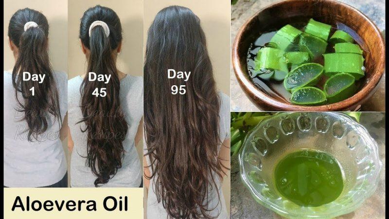 Aloe Vera-thick-hair
