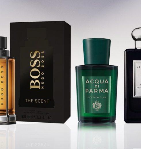 10 Best Perfume for Men On 2019|  That Women Love