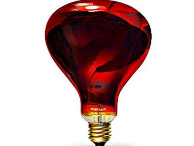RubyLux Infrared Bulb [2019 Full Reviews]